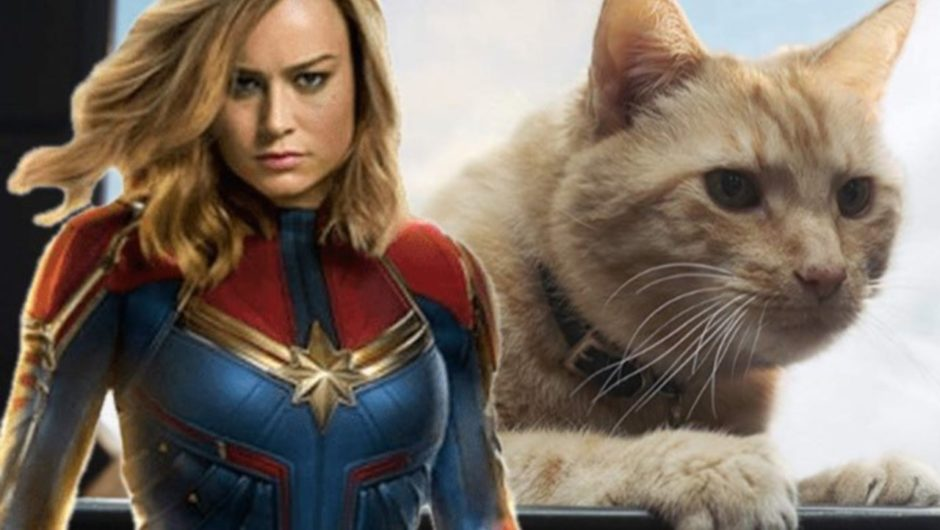 'Captain Marvel' Reproduced Classic Goose the Feline Scene From The Comics