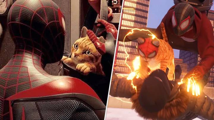 Spider-Cat is already taking shape as the real hero of Spider-Man: Miles Morales