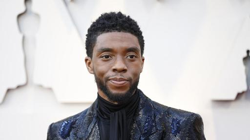 "Chadwick Boseman received the posthumous ""Hero for the Ages"" award at MTV Movie & TV Awards"