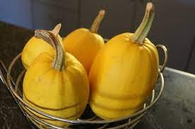 Confidential Symptoms of Eating Spaghetti Squash, says science